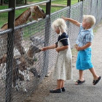 Amsterdam with kids - animal farm