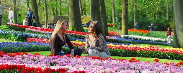 Visit Keukenhof Gardens from Amsterdam