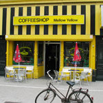 Mellow Yellow Coffee Shop